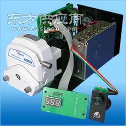蠕动泵OEM-BS600-1图片