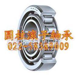 FAG进口轴承代理圆柱滚子轴承图片