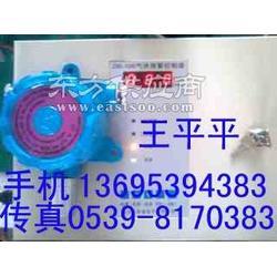 一氧化碳检漏仪一氧化碳泄漏报警器图片