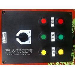 防爆防腐控制箱BXK8050-A2D2K1G报价图片