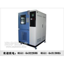 QL-800臭氧检测箱去哪里买图片