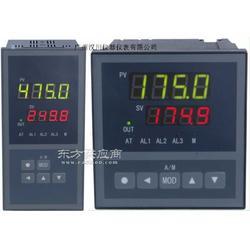 XSC5 PID调节仪表XSC5/B-FRT0C3A0B0S0V0图片