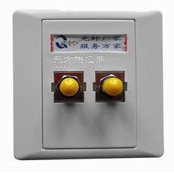 SC/FC/ST/LC双口光纤面板图片