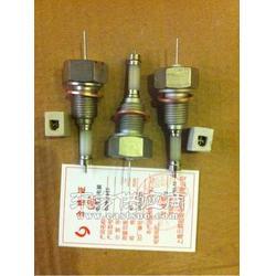 DJM2015-87测量筒水位计电接点图片