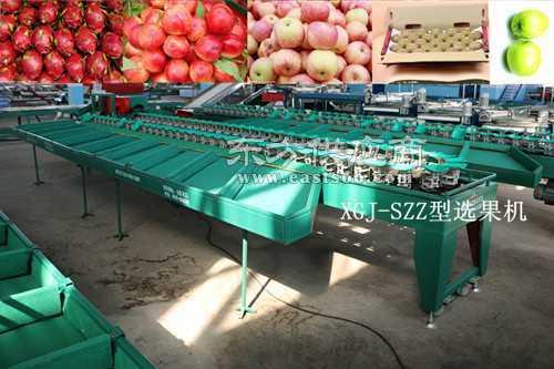 分选苹果大小的机器