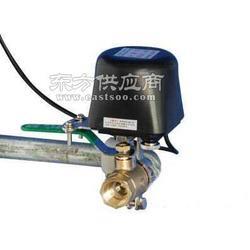 燃气机械手-SS2015机械阀门专业生产商图片