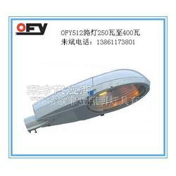 OFY5102防水防腐道路灯250W400W图片