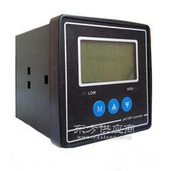 XY-310A工业PH/ORP计价图片