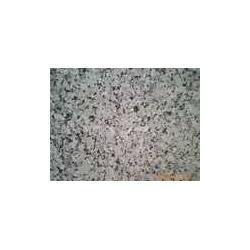 梨花白花岗石图片