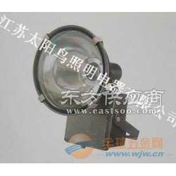 供应太阳鸟牌CXTG081投光灯图片