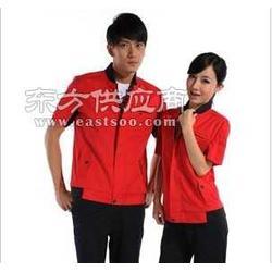 浦东工厂制服订做全棉厂服定做员工polo衫图片