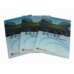 订做港澳便宜二页夹 E310文件袋工厂 便宜L型文件夹图片