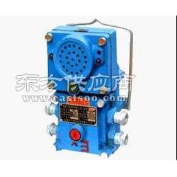 KXB127通讯语音信号装置AC127V电压-2000米通话/打点信号装置图片