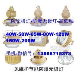 厂家直销免维护防水防尘防腐灯 SBF6105-YQL120 IP65/WF2/120W 无极灯光源图片