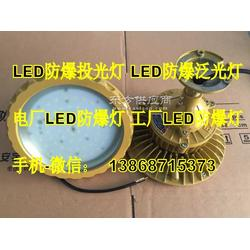 BAD96-高效节能免维护LED防爆照明灯ExdCT6Gb Extd 30W50W70W100W图片