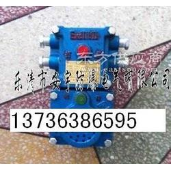 KXH12736-A声光语言报警器打点通讯信号器厂家图片