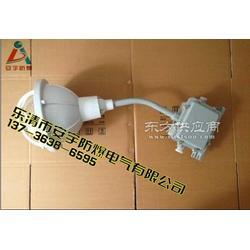 壁装30防水防尘防腐弯灯FAD-S-L150B1Z图片