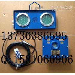 ZSB127矿用水泵房高低水位超标报警仪图片