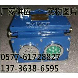 KXB127斜井声光语言指示报警器/KXB127井下大巷弯道声光语音报警器图片