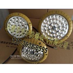 FAD-E50b1H防水防尘防腐LED灯防水防腐工厂灯LED图片