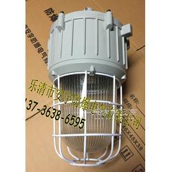GF9150/100W亚明光源防图片