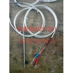 热电阻WZP-291/WZPK-291图片
