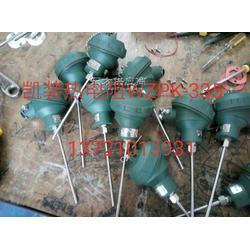 铠装热电阻WZPK-233/WZPK-234/WZPK-235/WZPK-236/WZPK-238图片