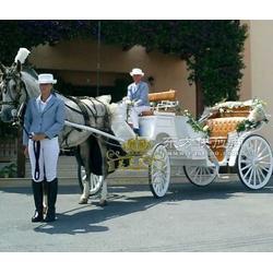 欧式婚庆马车、观光马车、欧式马车、皇家马车图片