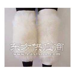 保健护膝经销商图片
