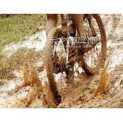 泥地自行车赛道图片