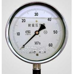 供应杰控不锈钢压力表参数图片