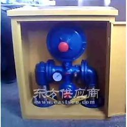 安特尔生产YST系列液化气专用调压器图片