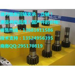 彭浦320-200挖掘机回转支承/立轴/回转支撑/大齿圈图片