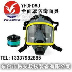 球形全面罩防毒面具图片