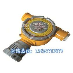 探测煤气的有毒气体探测器CO气体报警器图片