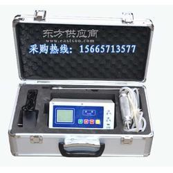 便携式内置泵气体检测仪泵吸式报警仪图片