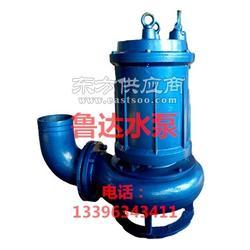 RQW耐高温排污泵图片
