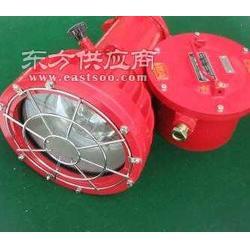 ZBD175/127投光灯镇流器参数图片