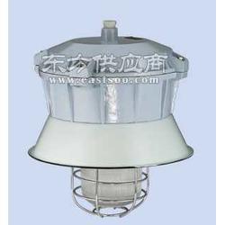 d-PD隔爆型防爆灯棚顶安装 型号d-PD图片