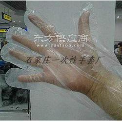 一次性薄膜卫生手套多少钱图片