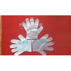 家用透明薄膜卫生手套图片