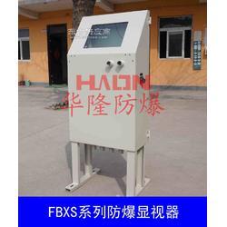 厂家订做FBXS系列防爆显示♀器图片