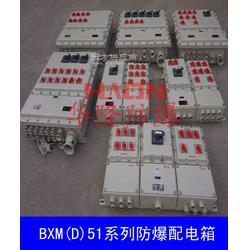 供应BXMD51系列 不锈钢防爆配电箱图片