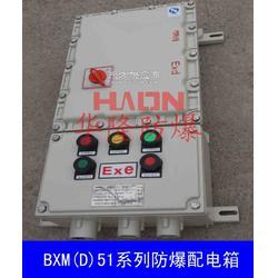 长期供应BXMD51系列防爆配电箱图片