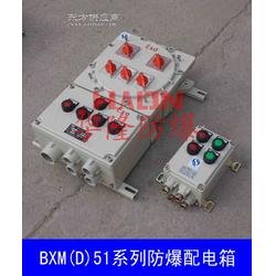 BXMD51系列防爆配电箱图片