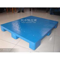 塑料托盘生产厂家优惠质量可靠送货到家图片