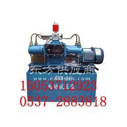 4DSB电动试压泵 让利直销图片