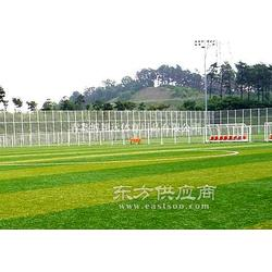 进口足球场人造草坪赛尔隆足球场人造草人工草坪图片