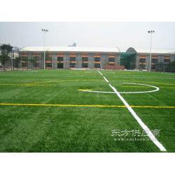 橄榄球场人造草坪图片