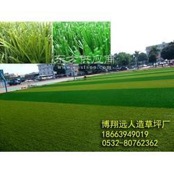 博翔远塑胶跑道,人造草坪,体育设施图片